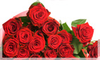 Roses | Rose Flower Arrangements