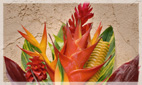 Tropical Flower Arrangements