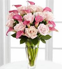 I'm Sorry & Apology Flowers