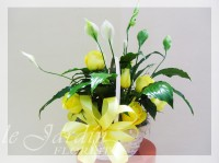 Peace Lily Basket - Live Plants Flower Arrangement | Le Jardin Florist