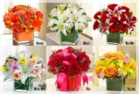Colors of Love Cube Flower Arrangements | Le Jardin Florist