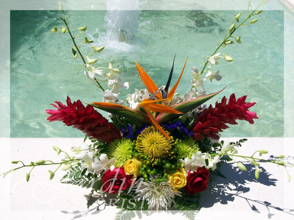 Tropical splash flower arrangement le jardin florist for Arrangement jardin