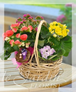 European Blooming Basket - Live Plants Flower Arrangement | Le Jardin Florist