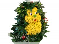 Harry the Hedgehog - Flower Arrangements for Kids | Le Jardin Florist
