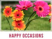 Happy Occasions