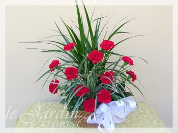 Planter Arrangement with Live Plants and Fresh Cut Carnations by Le Jardin Florist
