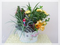 French Garden Planter - Live Plants Flower Arrangement by Le Jardin Florist