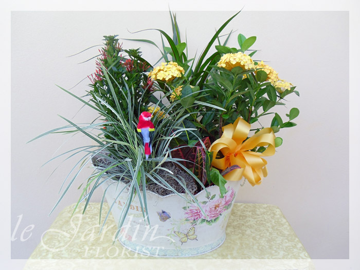 French garden planter live plants flower arrangement for Garden arrangement