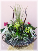 Orchidia - Orchids and Live Plants | Le Jardin Florist Signature Arrangement