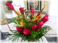 Tropical Wonder - a Le Jardin Florist Signature Flower Arrangement